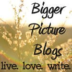 Announcing... Bigger Picture Blogs