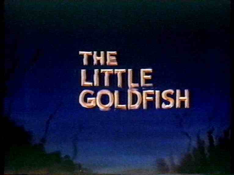 Little Gold Fish