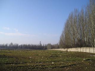 Николаевское шоссе вдали
