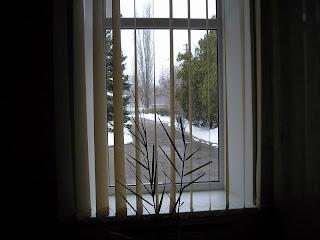 вид из окна 28.02.07