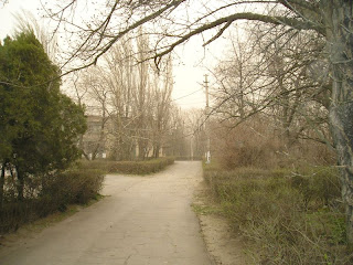 пыльная буря 23 марта 2007; инфекционная больница