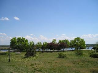Вид на деревья возле областной библиотеки, 13 апреля 2007