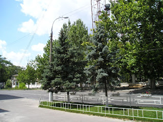 В районе Ушакова - Суворова