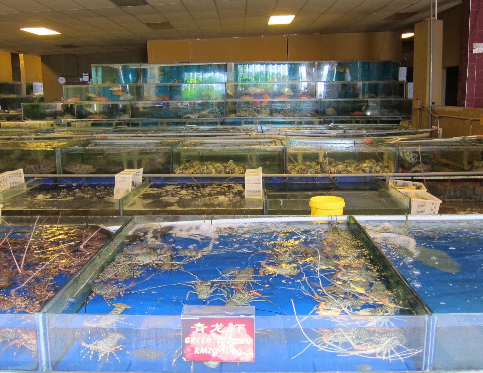 Ocean Village Seafood Restaurant Maple Ridge Bc
