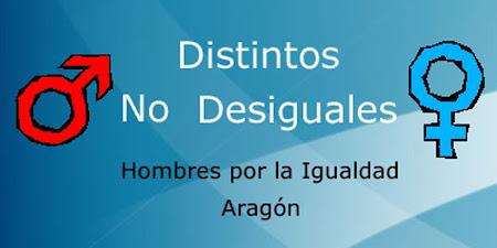 Hombres por la igualdad en Aragón