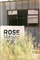 Rose Nebraska