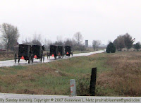 Mennonit buggies going to church