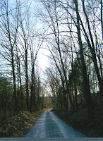 Rural road, Christian County, KY