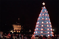 Blue spruce Christmas tree at the White House