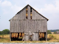 Tobacco barn, Christian County, KY