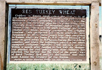 Russian Mennonites brought red wheat to Kansas