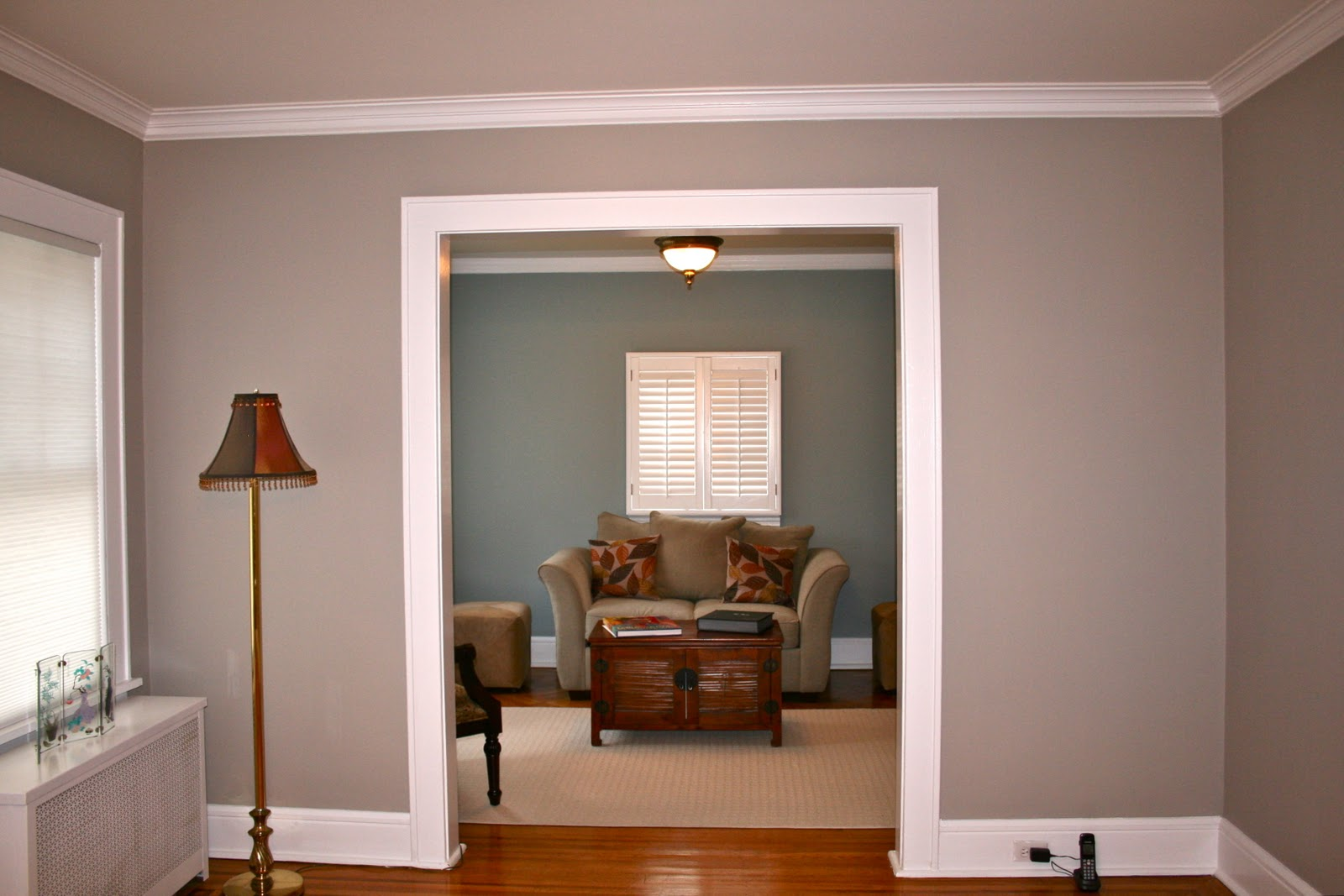 Color Forte Benjamin Moore Paint Color Consultation with Thunder AF685