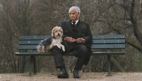 Well done: Un uomo e il suo cane
