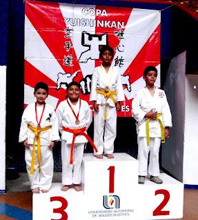 Yuishinkan México: noviembre 2009  Yuishinkan Méx...