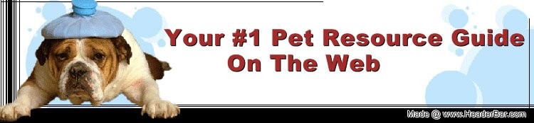 Your #1 Pet Resource Guide on the Web