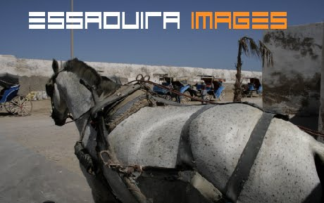 Photography holiday | Photography Tours in Morocco