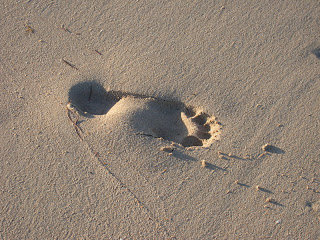 footprint at Sun Beach