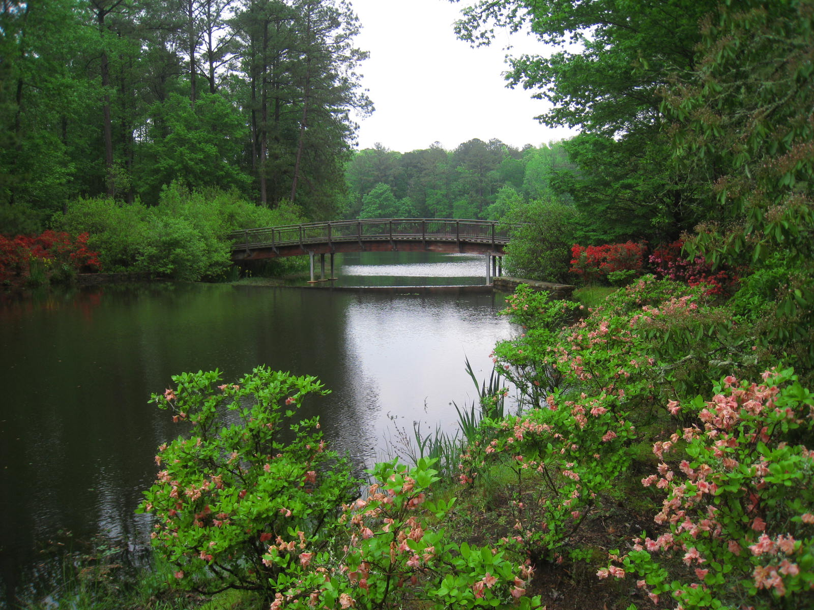 Georgia Garden: The World's Best Gardens: Callaway Gardens, Georgia