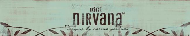 digi nirvana blog