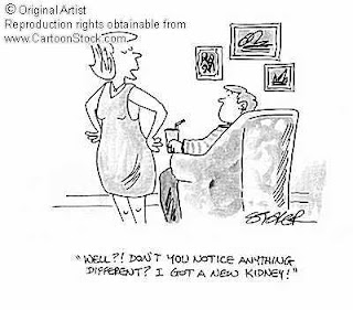 1000+ images about KIDNEY's on Pinterest