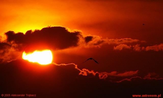 Każdy koniec ma dwa końce: albo jest unicestwieniem albo jest początkiem...
