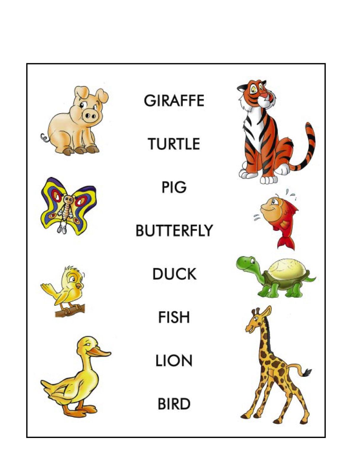English For Children Animals