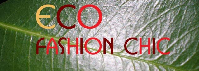 Eco Fashion Chic