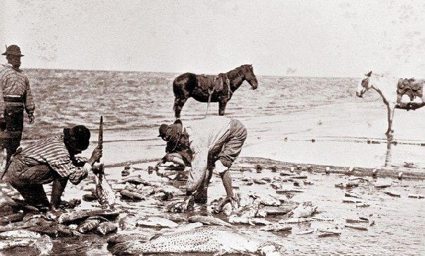 Resultado de imagen para pescadores a caballo en buenos aires