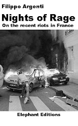 NIGHTS OF RAGE - On the revolts in France
