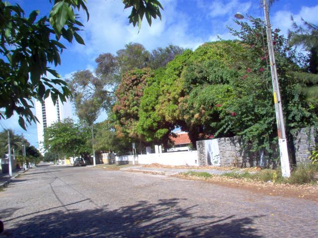Rua nas proximidades de Ponta Negra