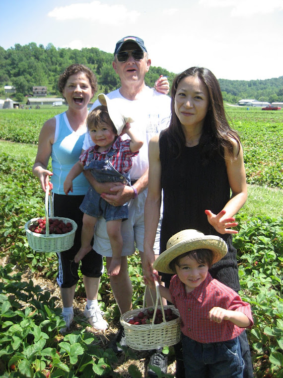 Picking strawberries in Marrietta Ohio