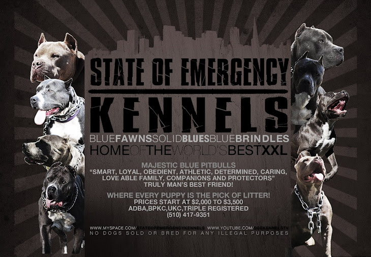 STATE OF EMERGENCY KENNELS