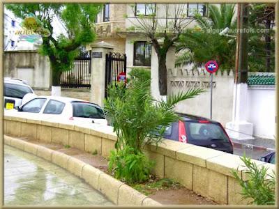 صورة لحيدرة من عاصمة الجزائر AlgerHydra209.jpg