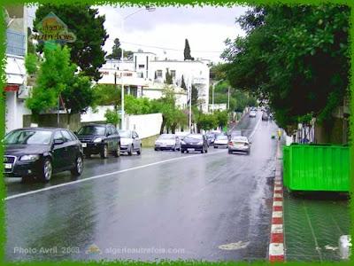 صورة لحيدرة من عاصمة الجزائر AlgerHydra214.jpg