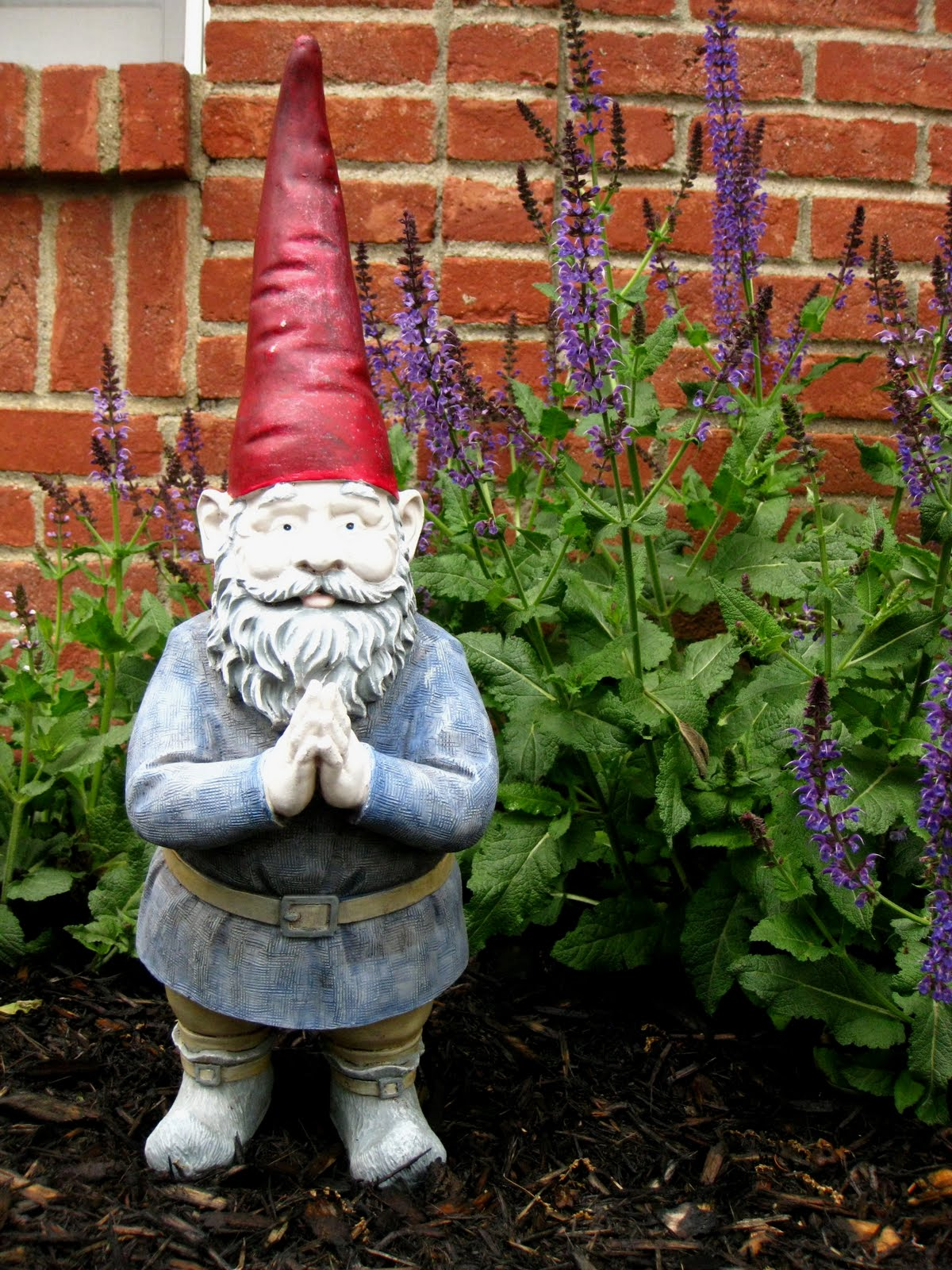 Gnome In Garden: Dishing It Up!: For The Love Of Gnomes