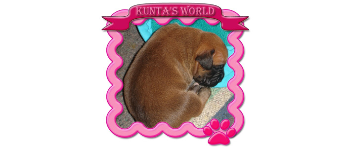 Kunta´s World
