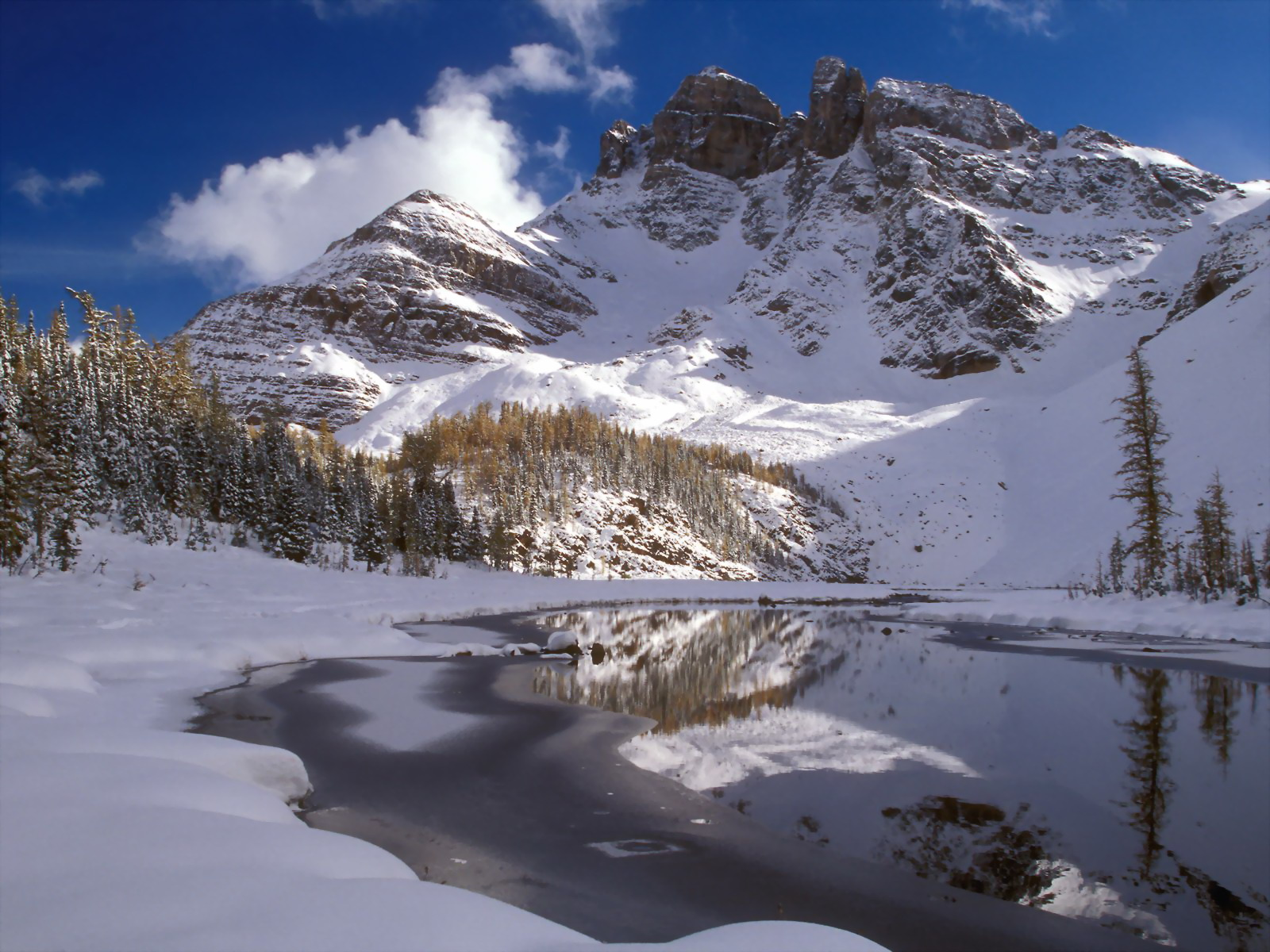 More and more and more wallpapers winter scenes wallpapers for Desktop gratis inverno