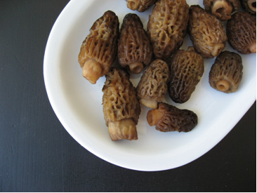 morel mushroom scramble recipe