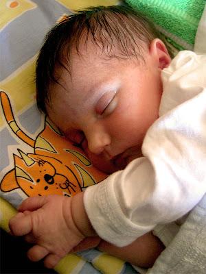 beba Mija Djordjevic uziva