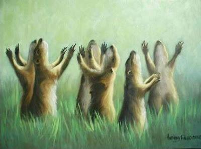Prairie Dog Rapture