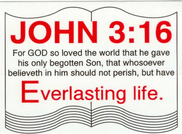 John 3 16 Bible Verse Background Wallpapers Free