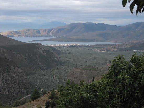 El mar de olivos de Itea