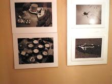 Participació Concurs Fotos Sant Antoni 2008