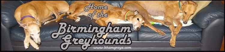 Birmingham Greyhounds