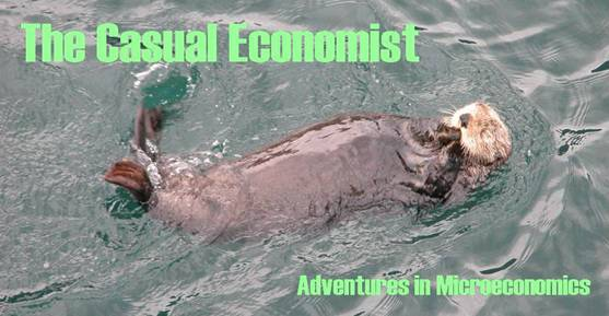 The Casual Economist