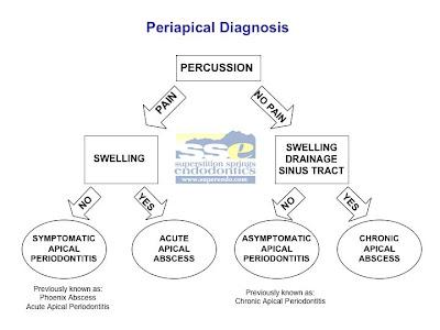 periapicaldiagnosis.jpg