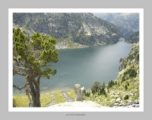Lago de S.Mauricio Lleida