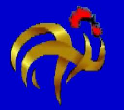 Gallo Constituyente