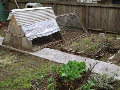 Sustainability Blog Raised Bed Gardens