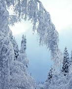 зима в драгиново